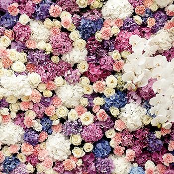 pozadie flower wall FOTOKÚTIK.sk - PHOTOBOOTH.sk